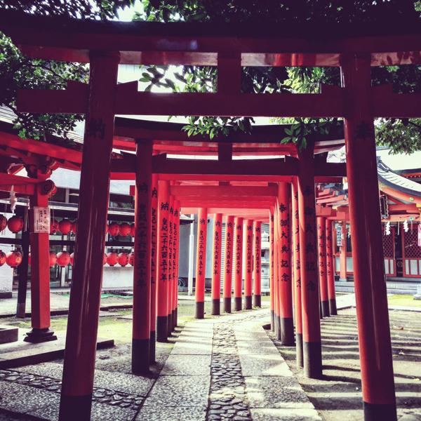 豊栄稲荷神社 / iPhone 6_c0334533_20280720.jpg