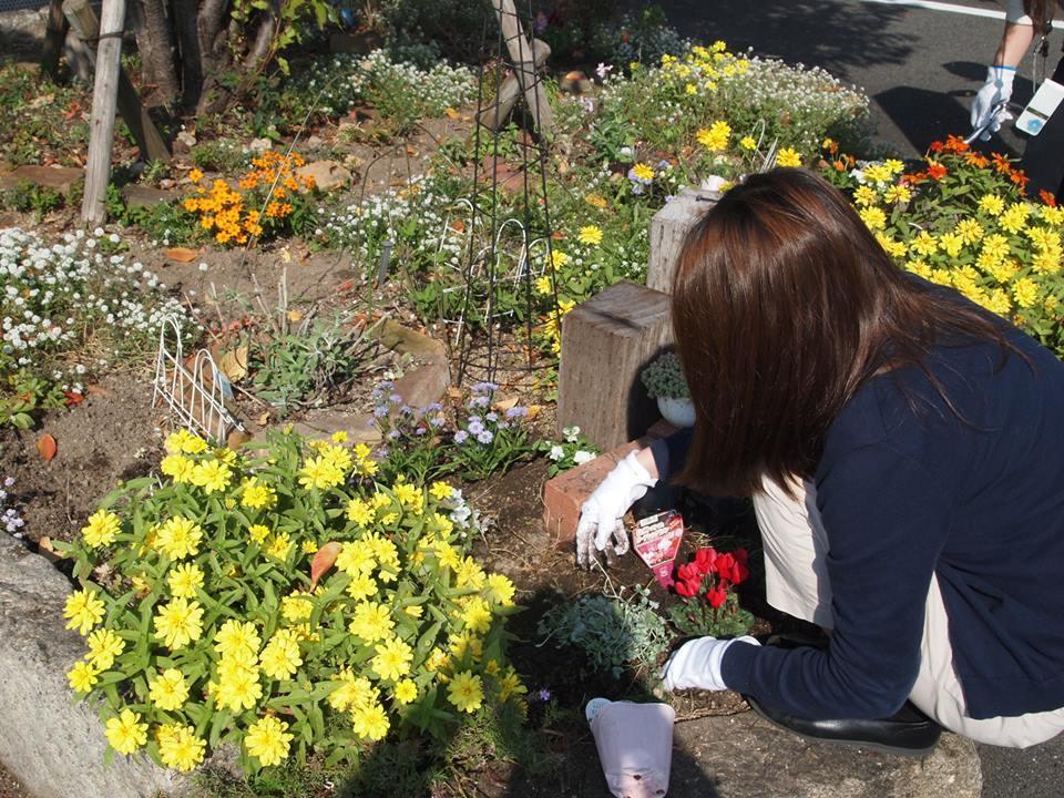 本日はお花の植え付け日_b0211845_18041764.jpg
