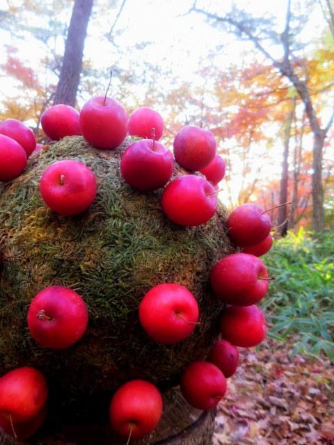 Art of Forest 2017 * 紅葉ライトアップ~ニコライ・バーグマン展示_f0236260_23294517.jpg