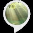 音声サービスブログ_f0383397_18284573.png