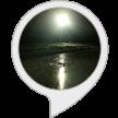 音声サービスブログ_f0383397_18334219.png