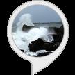 音声サービスブログ_f0383397_18392351.png