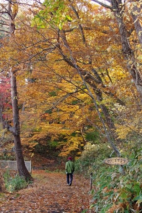 秋の香雪園。_b0106766_14231637.jpg