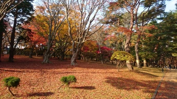 香雪園、見晴公園の紅葉_b0106766_14501157.jpg