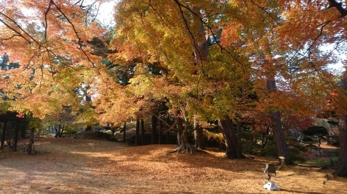 香雪園、見晴公園の紅葉_b0106766_14502870.jpg