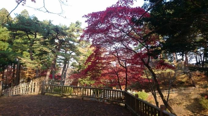 香雪園、見晴公園の紅葉_b0106766_14503259.jpg