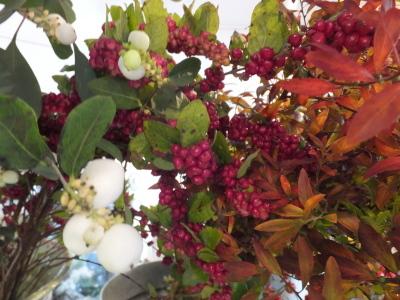 オークリーフ(秋はいいですね)_f0049672_17290430.jpg