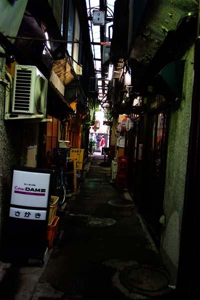 東京散歩(呑んべ横丁(立石))_b0103798_8393113.jpg