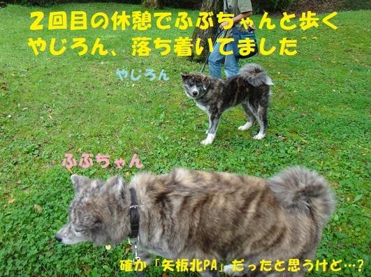 f0121712_22201977.jpg