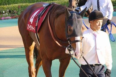 ダービー2着馬の貫禄!アルゼンチン共和国杯は、スワーヴリチャードが人気に応え3歳馬20年振りV達成_b0015386_22033947.jpg