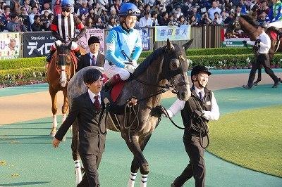 ダービー2着馬の貫禄!アルゼンチン共和国杯は、スワーヴリチャードが人気に応え3歳馬20年振りV達成_b0015386_22040414.jpg