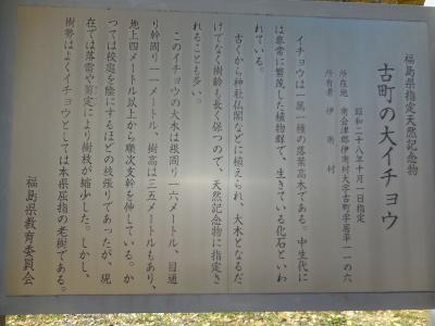 11月6日(月)  晴れ_f0210811_12121970.jpg