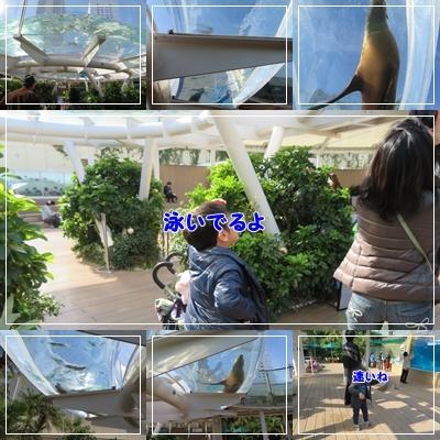b0254145_16423129.jpg
