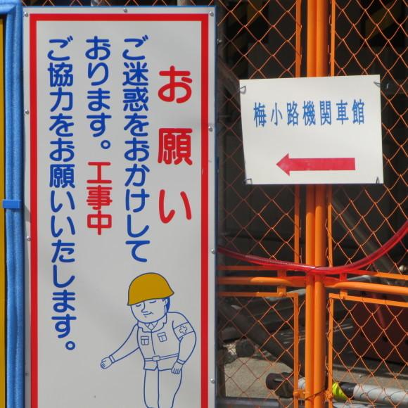 てっぱく小ネタ 京都市にて_c0001670_20504146.jpg