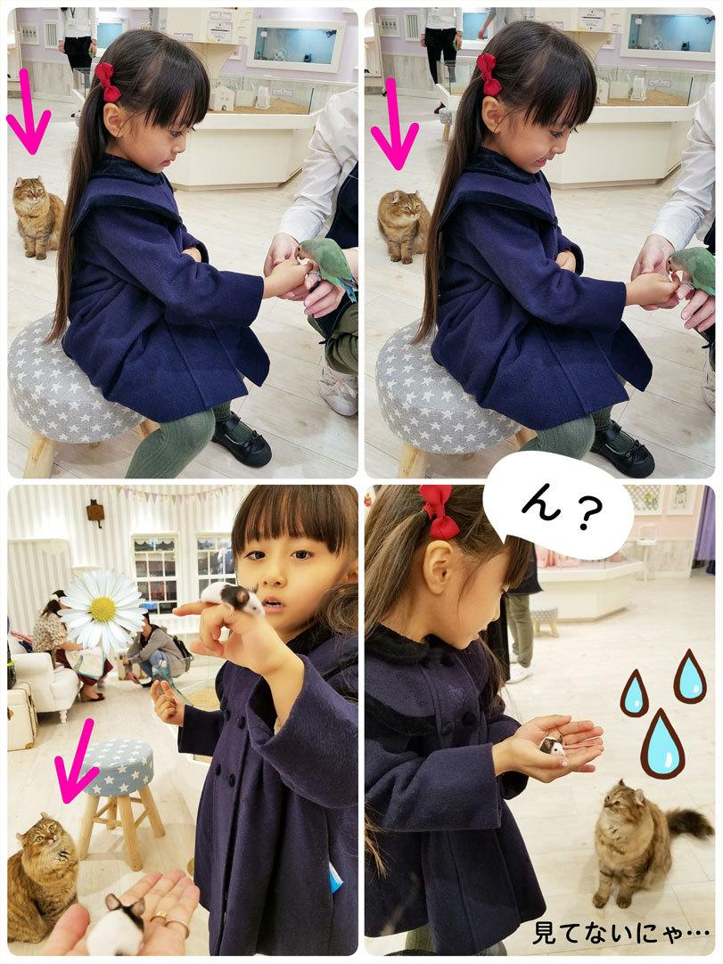 母娘で大阪旅行♡(1日目)_d0224894_06150287.jpg