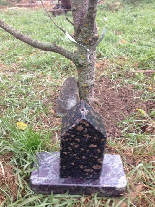 秋の中の春ー桜    展覧会BERCELハンガリー_c0100195_14262065.jpg