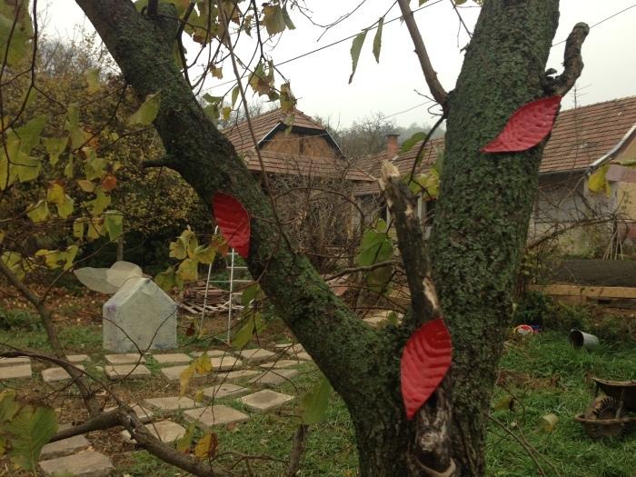 秋の中の春ー桜    展覧会BERCELハンガリー_c0100195_14301888.jpg
