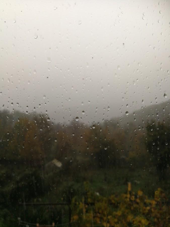雨の日曜日でした_f0106597_03133592.jpg