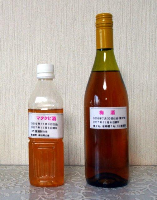 2017年11月7日(火) 果樹酒(ウメ、マタタビ)初しぼり_a0345007_171184.jpg