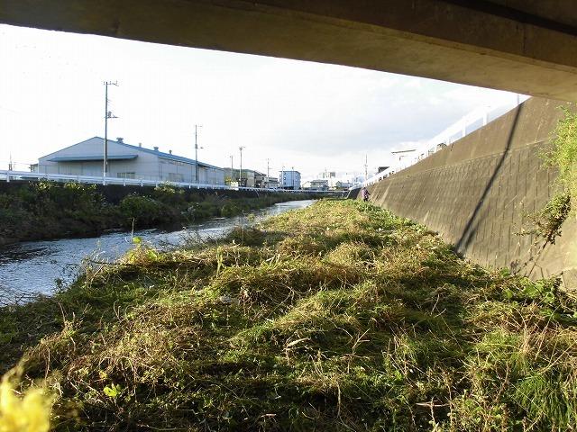久々の「小潤井川の草刈り清掃」と、「ホルモン忠ちゃん」で久々の「締めのラーメン」_f0141310_08163026.jpg