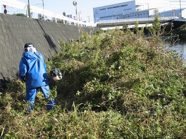 久々の「小潤井川の草刈り清掃」と、「ホルモン忠ちゃん」で久々の「締めのラーメン」_f0141310_08165854.jpg
