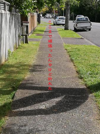 d0042827_19135440.jpg