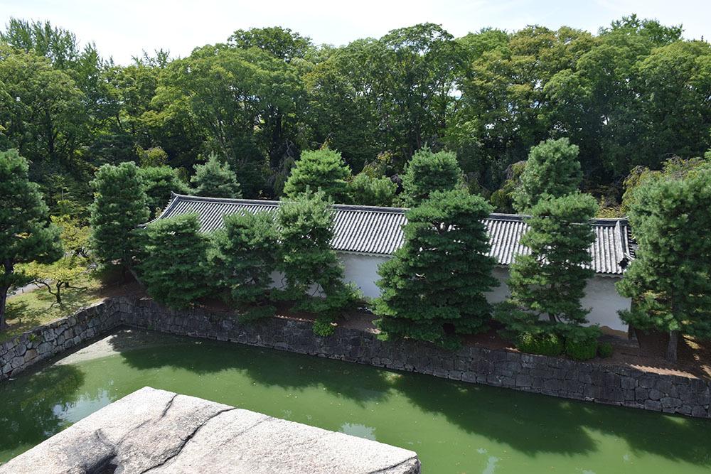 大政奉還150年記念に訪れた二条城。 その4 ~本丸・天守台~_e0158128_18341376.jpg