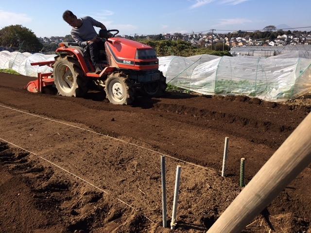 昨日播種した蕪の畝 は4分の1は赤軸のほうれん草を播種 穴あきトンネルを張りました_c0222448_12465863.jpg