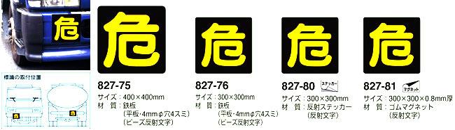 b0087456_10032338.jpg