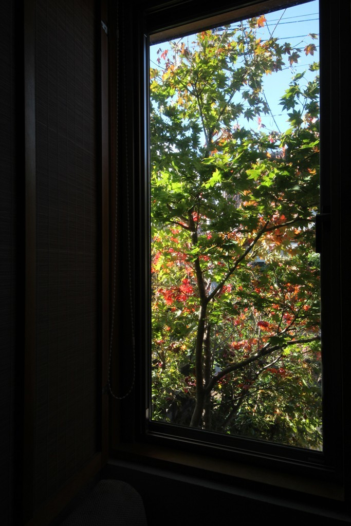 秋の彩り_c0310571_21023462.jpg