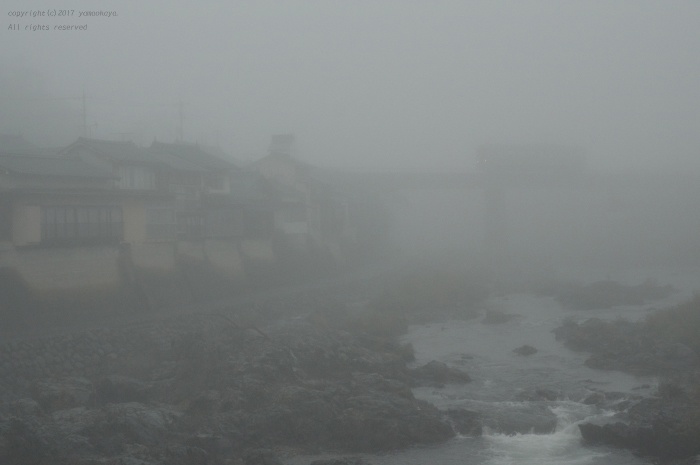 霧の町に_d0309612_23260059.jpg