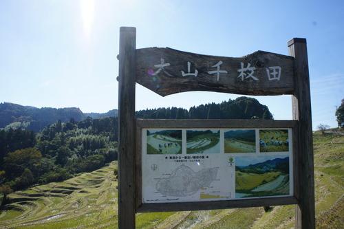 【秋の鴨川(千葉県)散歩】_f0215714_15232811.jpg