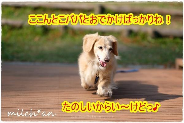 b0115642_21001861.jpg
