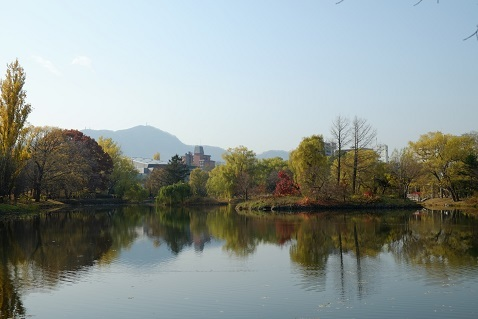 晩秋の札幌中島公園を散歩しました。_f0362073_06540293.jpg