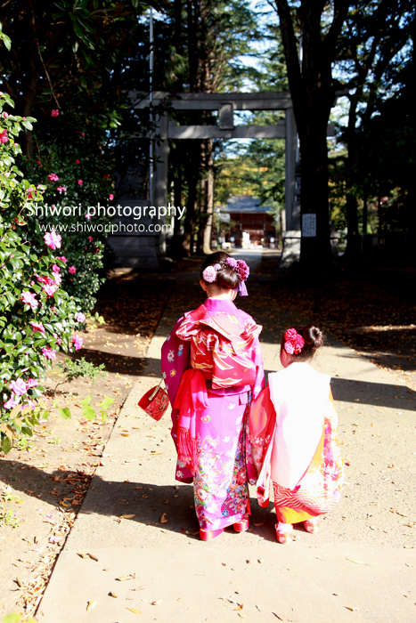♪753 Photo Gallery♪_d0170980_09555486.jpg