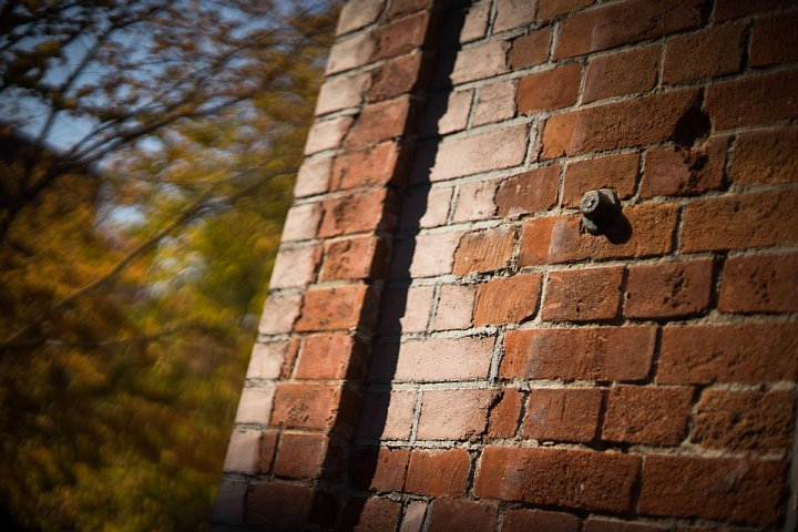 秋色に包まれた赤煉瓦の森_d0353489_19195633.jpg