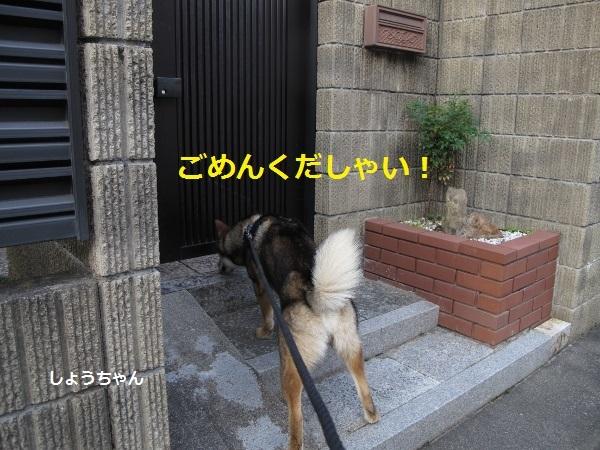 f0143123_08492667.jpg
