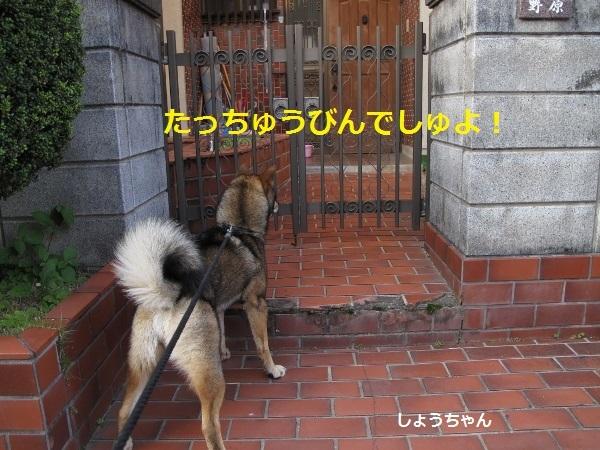 f0143123_08493608.jpg
