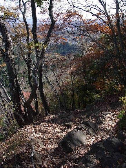 登山その4 太白山_c0063348_09073881.jpg