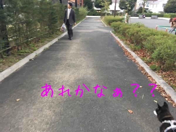 f0369014_13551491.jpg