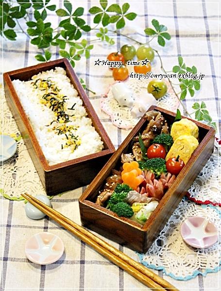 豚の生姜焼き弁当と今日のわんこ(陽だまり編)♪_f0348032_17470681.jpg