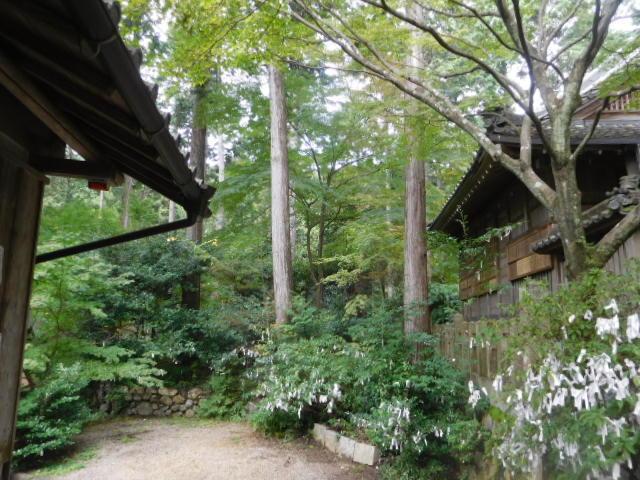 猿丸神社 <お茶の京都・宇治田原町②>_d0106134_21441436.jpg