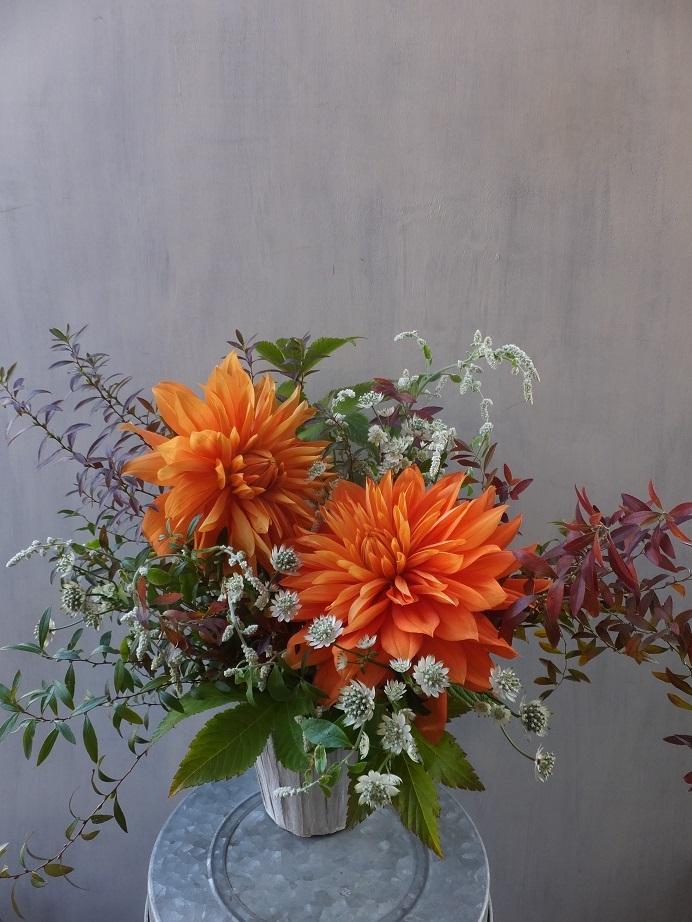 オークリーフ(菊とダリアのアレンジメント)_f0049672_16131203.jpg