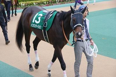 古豪健在!武蔵野Sはインカンテーションが重賞6勝目を飾る_b0015386_23244379.jpg