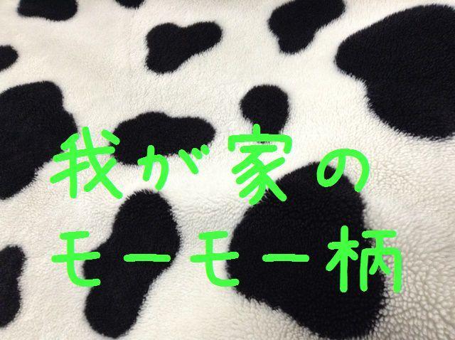 d0137326_11480570.jpg
