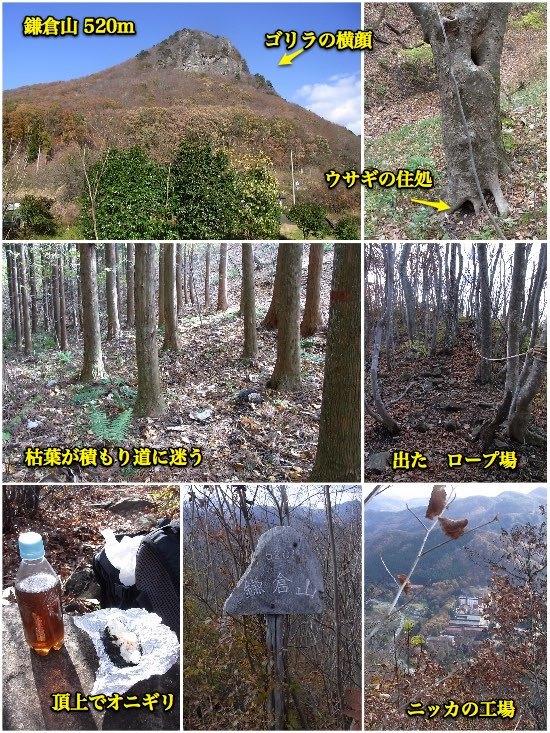 登山その5 鎌倉山(作並ゴリラ山)_c0063348_22292592.jpg