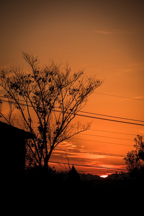 晩秋から初冬に変わる黄昏_d0353489_22475215.jpg