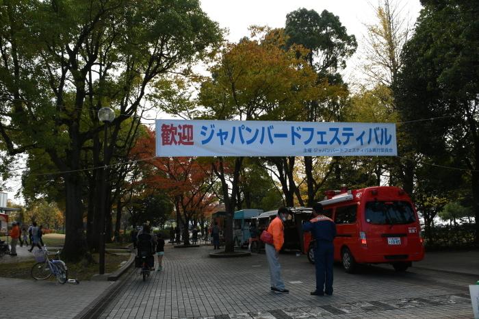 ジャパンバードフェスティバル2017_a0127090_20592817.jpg