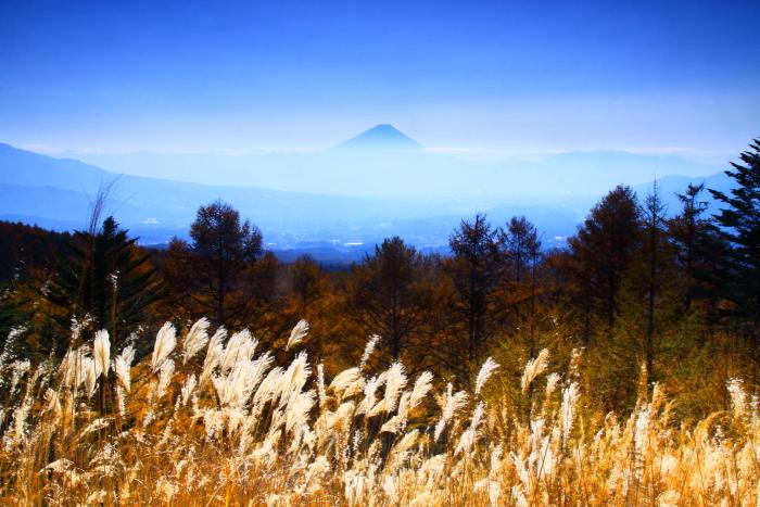 29年11月の富士(7)観音平の富士_e0344396_17535505.jpg