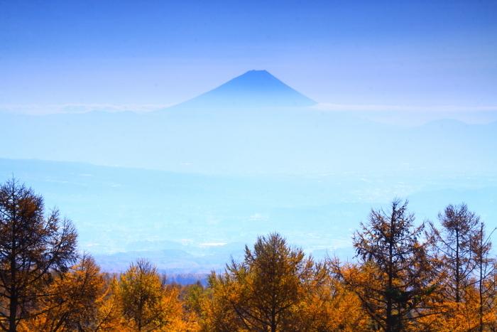 29年11月の富士(7)観音平の富士_e0344396_17540399.jpg